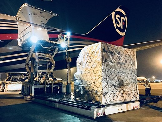 SF Airlines commences freighter services on Shenzhen-Delhi route