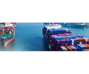 Global Sea Freight Forwarding Market