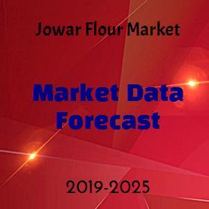 Jowar Flour Market