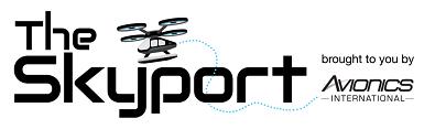 The Skyport newsletter logo