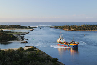 Gippsland lakes' fish stock are threatened by the run-off of ash and bushfire debris