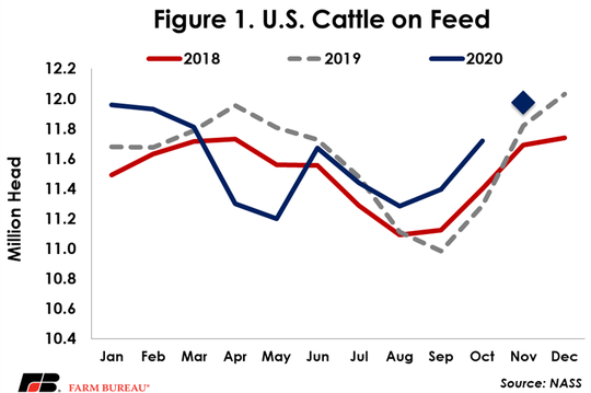 After strong impacts from the pandemic in April and May, the number of cattle on feed has largely followed seasonal patterns, but since August has been running above recent years' levels.