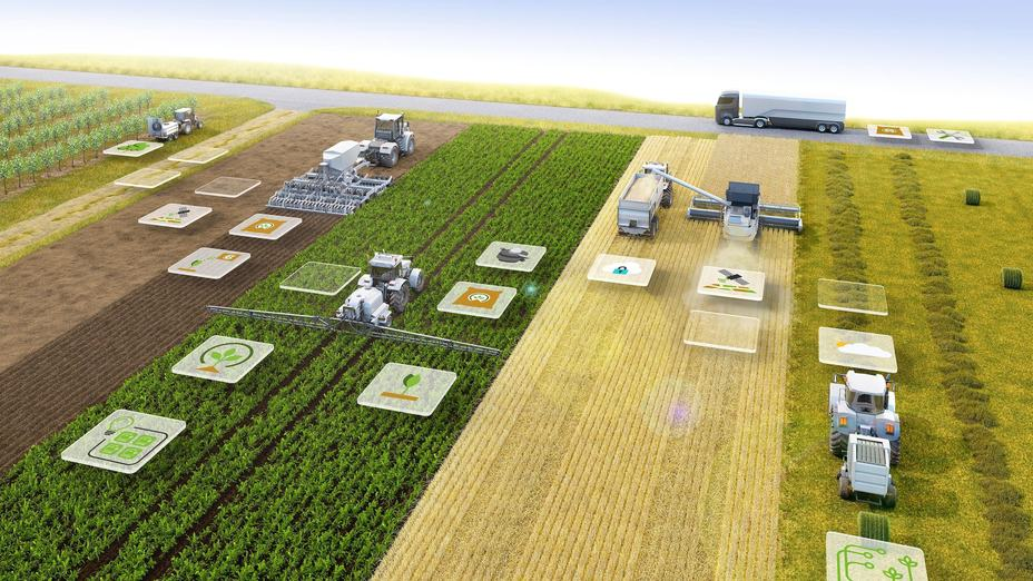 Farm Liberalisation